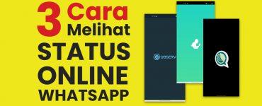 3 Cara Melihat Status Online WhatsApp Teman, Pacar Atau Gebetan yang Disembunyikan copy
